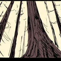 Storyboard-005