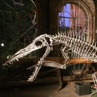 pliosauro
