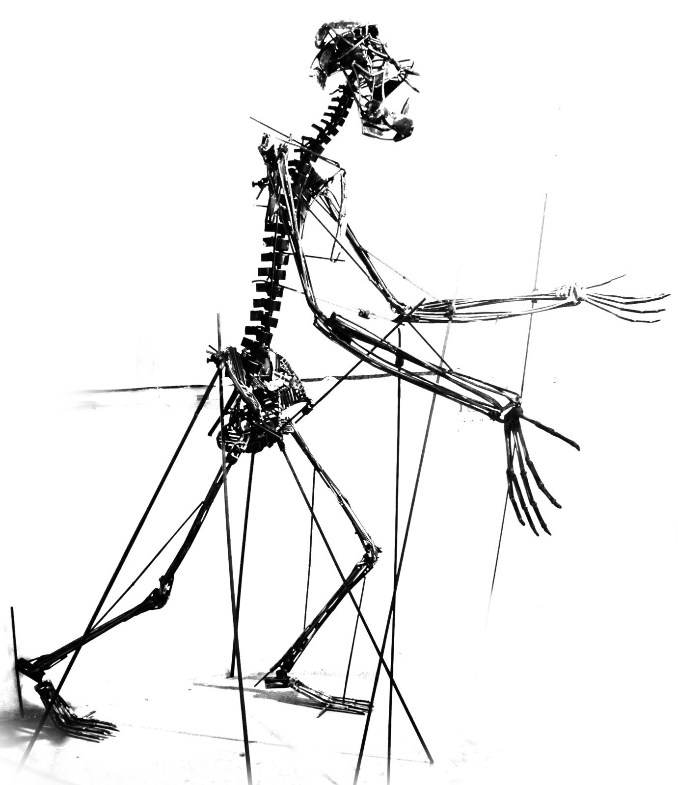 sideropithecus-b